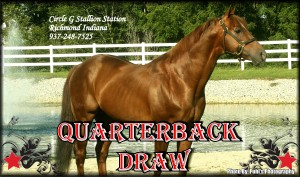 3Quarterback Draw Flyer