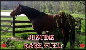 Justins Rare Fuel 3x5