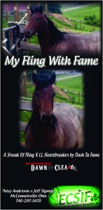 My Fling With Fame