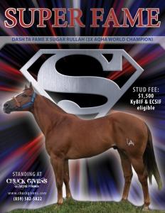 ChuckGivens_Stallions_Flier_SUPER-FAME