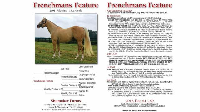 Frenchmans Feature