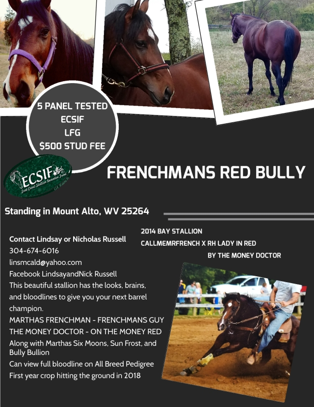 Frenchmans Red Bully